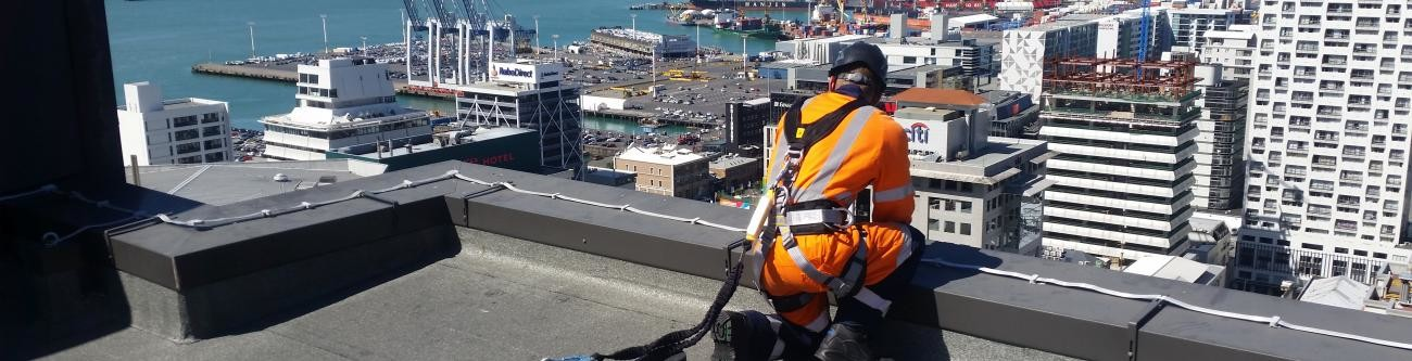 Fall Arrest and Abseil Systems